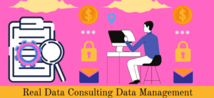 Real Data Consulting Data Management
